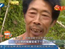 《现场深一度》屏南:红色山区县的扶贫路
