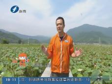 《现场深一度》武夷山:闽北苏区中心县的新长征