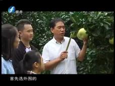 《时代先锋》文旦柚大王:刘坤泳