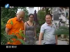 """《时代先锋》""""漫游小镇""""南源岭"""