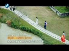 赤坎镇——岭南侨乡 崇文尚义
