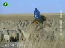 《纪录时间》美丽乡村——草之原