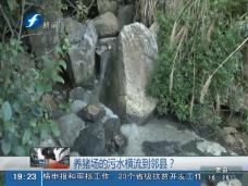 《现场深一度》养猪场的污水横流到邻县?