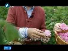 《风物福建》福州调香师郭斌