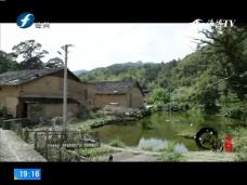 《风物福建》政和县古元村返乡置业青年