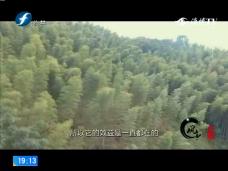 《风物福建》松溪花桥乡源尾村