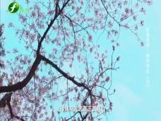 《纪录时间》新华书店(六)