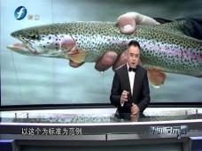 """《新闻启示录》""""生食三文鱼""""标准,谁说了算?"""