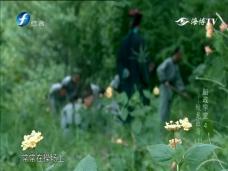 船政学堂4——蛟龙出海(下)