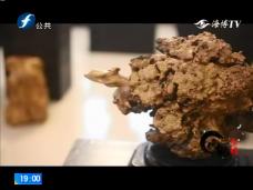 《风物福建》闽侯木根雕传承人杨学德