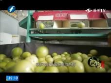 《风物福建》华安仙都镇百香果产业