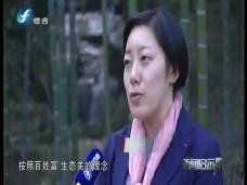 """《新闻启示录》《四十年·我们》杨国松:育竹""""土专家""""的小康之路"""