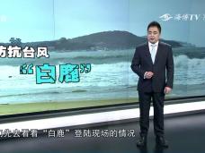 """《新闻启示录》防抗台风""""白鹿"""""""