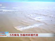 壮丽70年 奋斗新时代——八闽起宏图·福州