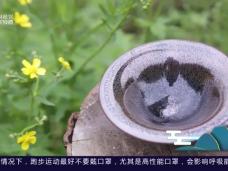《风物福建》顺昌黑釉茶盏技艺的复兴