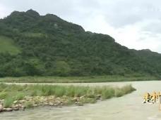 《新闻启示录》白杜村:美丽的蝶变