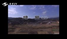海峡名录·名村名镇—培田(上)1