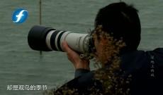 中国梦·福建故事—湿地上的城