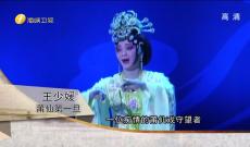 《海峡艺术名家》王少媛