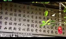 《记住乡愁》杨家堂村——修仁心行义事
