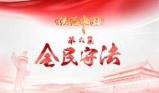 《法治中国》第六集-精编版