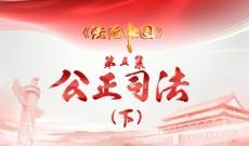 《法治中国》第五集-精编版