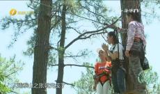 《遇见福州》森林人家旅游区