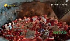 《福建茶文化》第八集《丰富多元乌龙茶》
