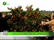 《清新福建旅游资讯榜》莆田:向莆铁路带火高铁游 南丰橘文化活动受欢迎