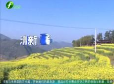 《清新福建旅游报道》龙岩:滨河绿道相继开放 市民享受生态福利