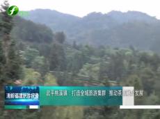 《清新福建旅游报道》武平桃溪镇:打造全域旅游集群 推动茶旅融合发展