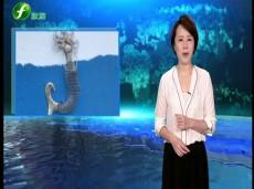 《清新福建旅游报道》福州:闽江河口湿地公园新建10座观景亭