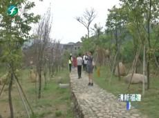 《清新福建旅游报道》打造乡村休闲旅游精品