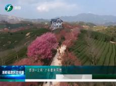 """《清新福建旅游报道》""""旅游+文明""""才有最美风景"""
