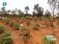 《清新福建文旅报道》龙岩永定:多措并举 确保辖区国省干线公路路畅