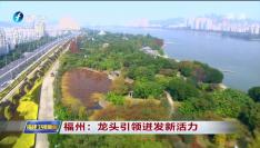 福州:龙头引领迸发新活力