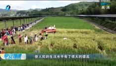 福建喜庆首个农民丰收节