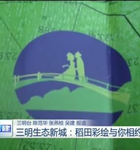 三明生态新城:稻田彩绘与你相约百蝶花海