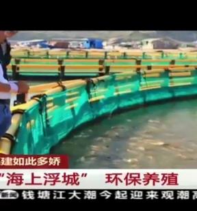 """福建宁德:""""海上浮城"""" 环保养殖"""