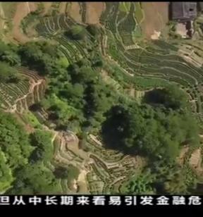 福建:生态优势是最大优势