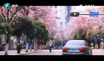 锦绣中国 广西柳州(下)