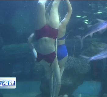 摘要:本月起,福州左海海底世界特邀俄罗斯远东奥林匹克中心水下花样
