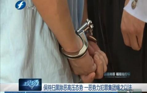 龙海:保持扫黑除恶高压态势 一恶势力犯罪集团绳之以法