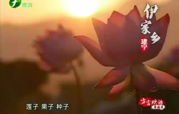《方言欢语 游福建  建宁伊家乡》11.18