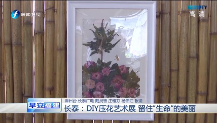 长泰:DIY压花艺术展 留住