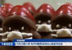 巧克力戴口罩 匈牙利糖果店别出心裁宣传抗疫