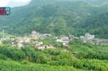"""福州丨白杜村的""""小康路"""""""