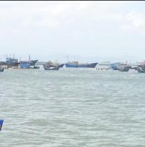 壮丽70年 奋斗新时代 县域改革进行时 连江:掘金海洋