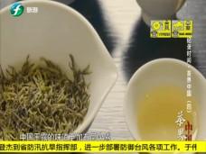 《纪录时间》茶界中国(四)