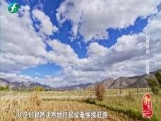 《纪录时间》江孜村